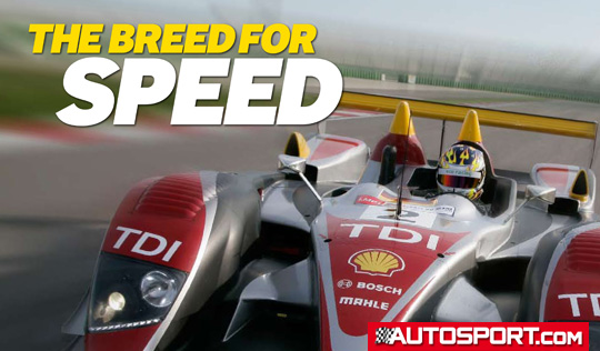 the-breed-for-speed